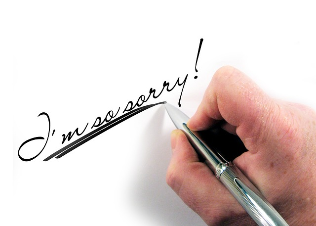 I'm Sorry Hand Letters Pen