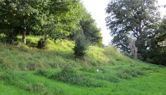 Part of Edmund Hill Green Burial Ground in Glastonbury, UK.