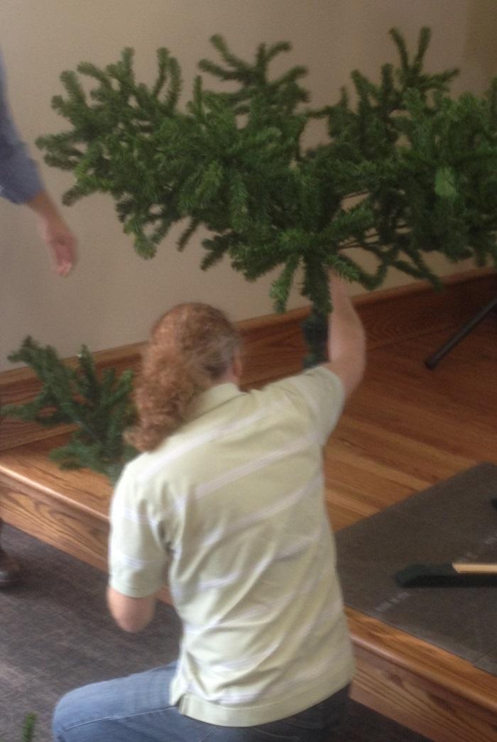 Christmas Tree Setup, 2015