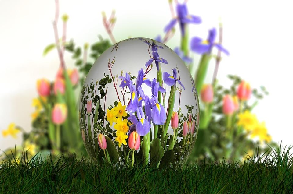 spring flower egg