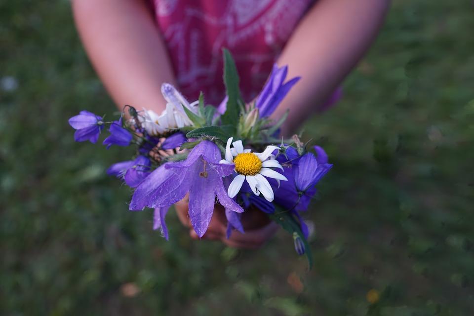 flowers-871499_960_720