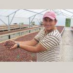 Equal Exchange Fair Trade Chocolate Sale