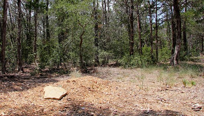 A grave in Eloise Woods Community Natural Burial Park, Cedar Creek, Texas.